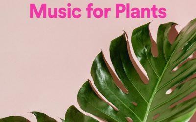"""Artículos   Programa tus riegos para tus plantas con la playlist de Spotify """"Music for Plants"""""""